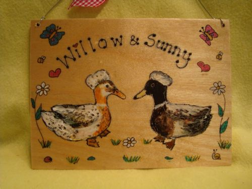 DUCK GARDEN FARM SHED OR WALL SIGN ANY COLOUR OR BREED WOODEN PERSONALISED ORDER 7 X 5 RECTANGLE (1)